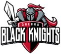 Black Knight webbshop